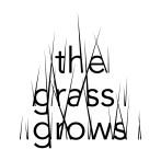 The Grass Grows: un nuovo modo di esporre l'arte, dal 14 al 22 giugno a Basel.